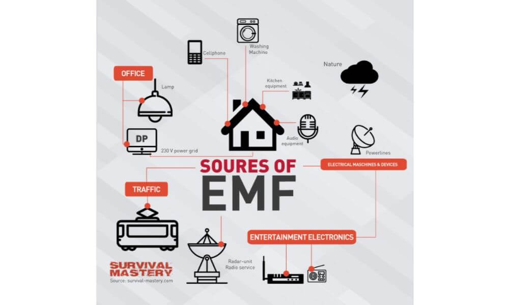 sources-of-emf-infographic_56ab3c6580eb5.jpg 1000 x 600
