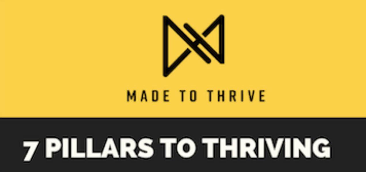 7 Pilars to Thriving!