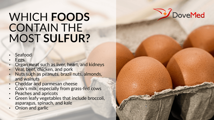 Which_Foods_contain_the_most_Sulfur.width-750
