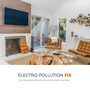 Elctro-Pollution Special Offer