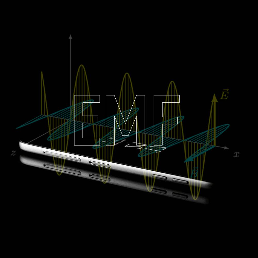 EMF Evaluation